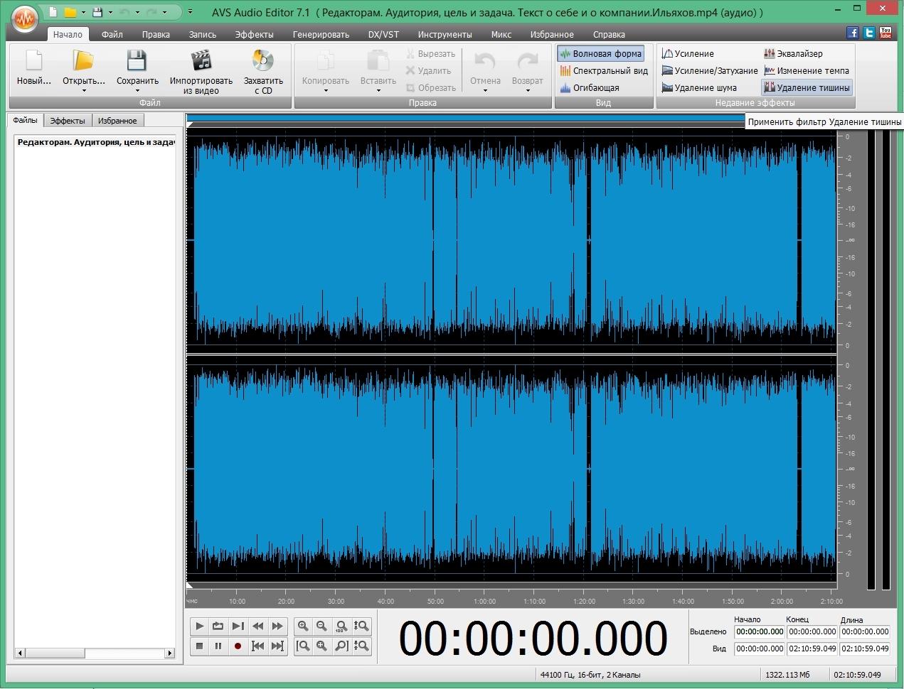 Окно программы после загрузки файла. Видны промежутки тишины.